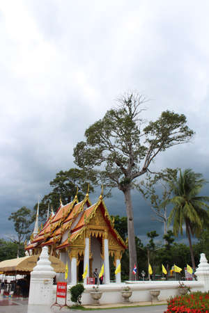 Beautiful Thailand Temple Stock Photo - 14259128