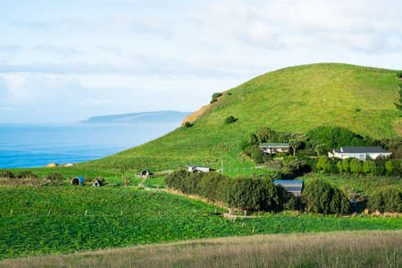 Stunning scene Cloudy and blue sky with farmland on the   green grassland beside the ocean. New Zealand agriculture in the rural area. Stock Photo
