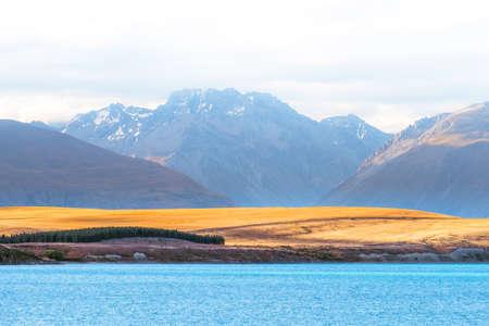 Beautiful scene of blue lake and yellow grassland with mount cook beside lake Tekapo before sunset.