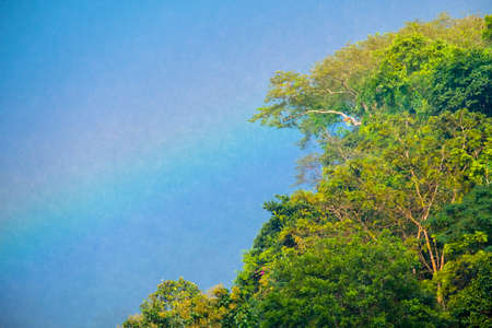 Close up shot, rainbow over the trees in the mountain during the falling rains.