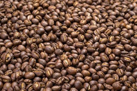 Depth of field shot, soft focus, Medium dark Roasted peaberry coffee beans background.