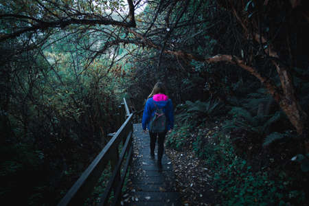 A woman backpacker with blue jacket walking alone on the stairway in the greenery nature. Stock Photo