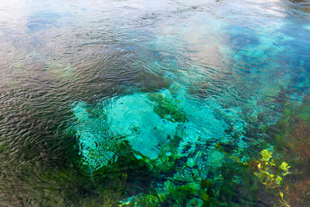 Beautiful nature at The Waikoropup? Springs, Takaka, Abel Tasman, New Zealand. Stock fotó
