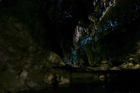 Amazing New Zealand Tourist attraction glowworm luminous worms in caves. High ISO Photo.. Stock Photo