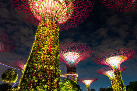 Singapore - Breathtaking scene of the supertree night light show at Garden by the Bay..