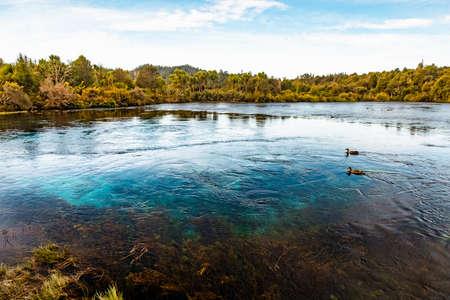 Beautiful natural Waikoropupu  springs. Takaka, New Zealand.