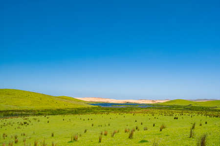 Beautiful landscape scenery of the mountain meadow and blue sky. Cape Reinga, North Island, New Zealand.