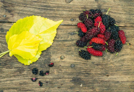 sited: Mulberry sited on the old wooden floor. Stock Photo