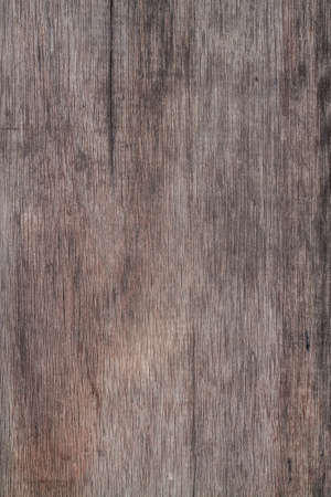 black wood texture: wood background