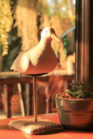 types of cactus: White Bird Cafe