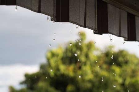 trickle down: its raining