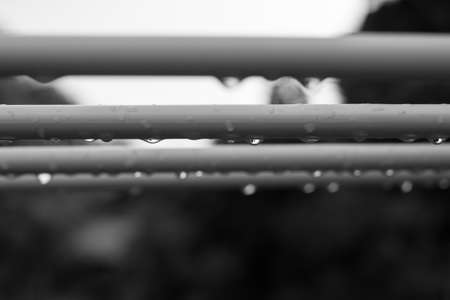 trickle down: Raindrops on clothes line monochrome background.