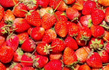 strawberrys: Strawberrys background.
