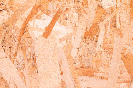 bribe: Scrap bois texture de fond.