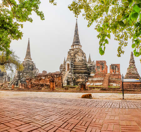 Wat Phra Si Sanphet fonts onto the Royal Palace complex which is the north of the temple. In mid 21th. Ayutthaya Thailand.