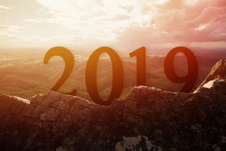 Silueta feliz para el año nuevo 2019 en piedra con fondo de puesta de sol