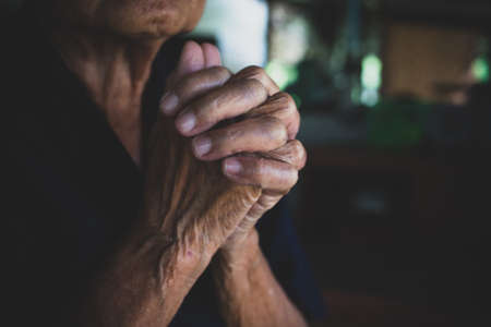 Praying hands of  Buddhism. Elderly woman god for  religion, belief, Holding hand in pray and thank buddha