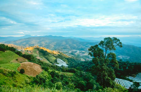 View point, Mae Ram Subdistrict, Mae Rim District, Chiang Mai, on the mountain, beautiful view and resort accommodation including trees, mountains, grass, sea fog, beautiful in winter. 版權商用圖片