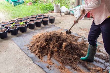 Farmers are using a shovel to scoop and mix soil and fertilizers. Preparation for planting vegetables in pots