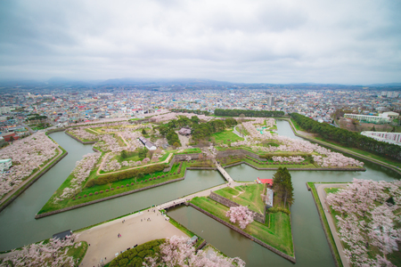 Goryokaku Fort from a viewpoint, Goryokaku Tower, with many beautiful cherry blossoms in spring of Japan
