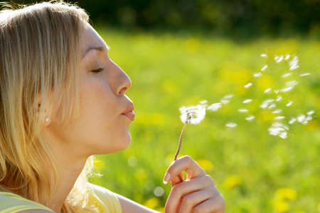 with pollen: The girl blows on a dandelion on a background of a grass