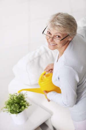 only senior women: Smiling older woman watering houseplant Stock Photo