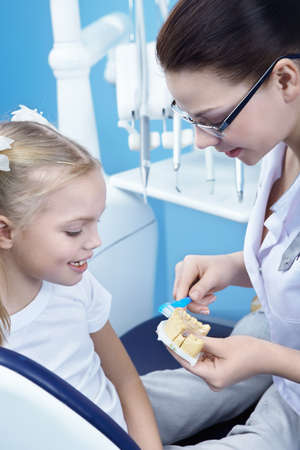 A young dentist shows a child how to brush their teeth Stock Photo - 8695828