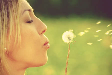 The girl blows on a dandelion on a background of a grass photo