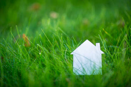 green: Cardboard house on the grass