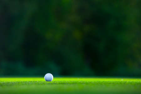 ball point: Golf ball on a lawn Stock Photo