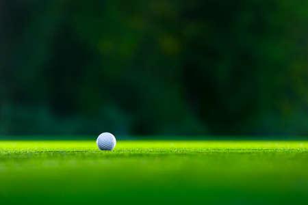 pelota de golf: Pelota de golf en el césped Foto de archivo