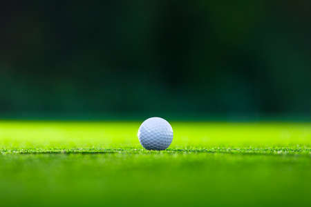 meadow grass: Golf ball on the lawn