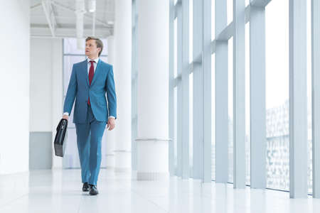 businessman suit: Businessman in a suit with briefcase Stock Photo