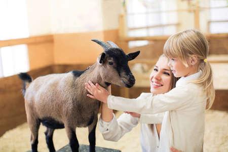 barn girls: Family with goat  on farm