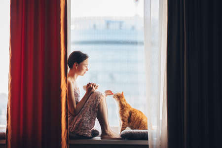 Young girl with a red cat at the window at home 免版税图像
