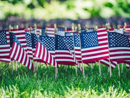 American Memorial Day al parco