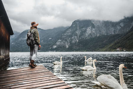 Young tourist by the lake with swans