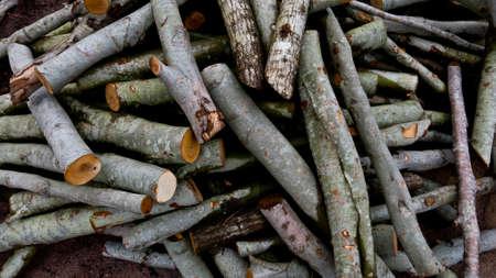 quemadura: cortar madera para quemar Foto de archivo