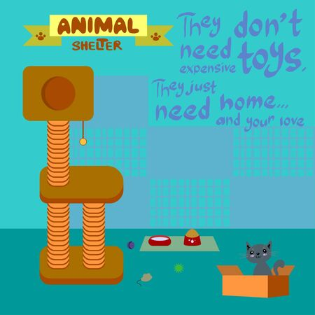 Cat from animal shelter with toys on the floor, cages and hand lettering enchanting inscription on blue background in vector Illustration