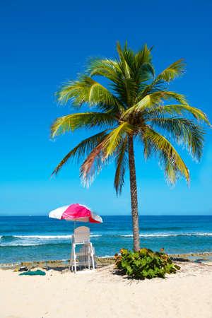 agencia de viajes: Exótica playa solitaria con la palma y la estación de salvavidas Foto de archivo