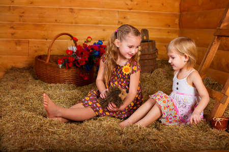 Two happy blond sisters sitting on hay in wooden country house and playing together  Colorful flowers in basket behind them  photo