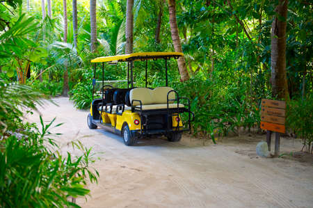 Electric car on the tropical island resort, parked near jungle