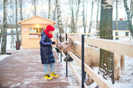 Happy teenage girl wearing warm clothes feeding wild animals in zoo.