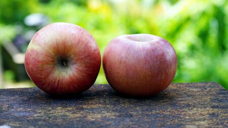 Close up two apples, outdoors