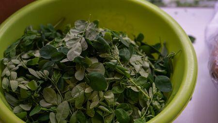 Close up Moringa leaves in a basin