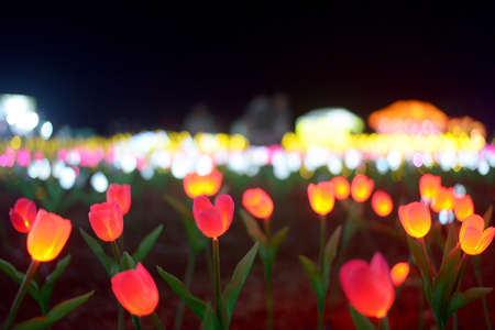 View of light flowers during a light festival in Bali, Indonesia