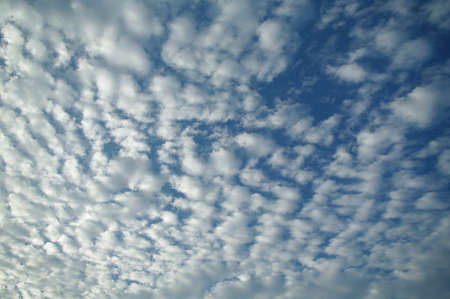float cotton cloud: Blue cloudy sky