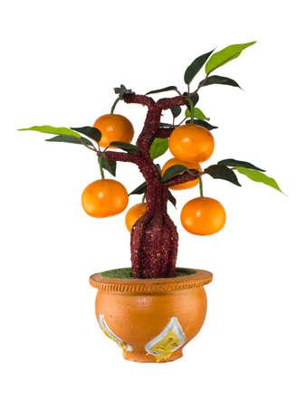 spurious: Orange tree model , home decoration