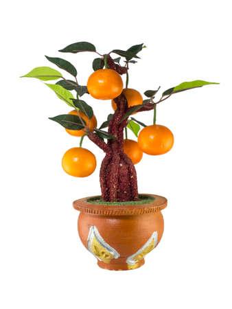spuria: Arancione modello ad albero, decorazione domestica
