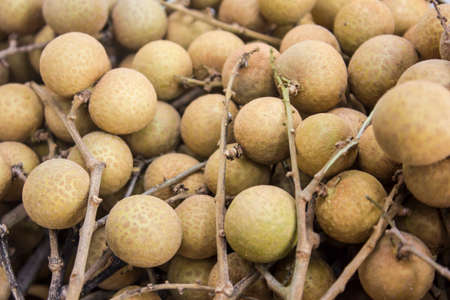 Asian fruit Longan photo